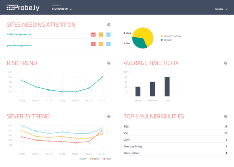 probely's overview window showing risk trend and top vulnerabilities