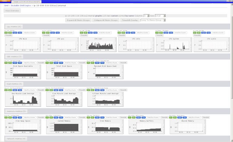 screenshot of ganglia showing host overview