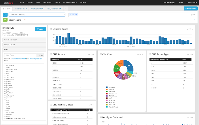 screenshot of graylog overview report showing dns details of a server